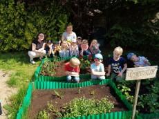 grupa Delfinki - Prace w ogródku