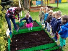 grupa Kangurki - Prace w ogródku