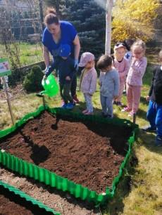 grupa Misie - Prace w przedszkolnym ogródku