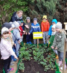 grupa Pingwinki - Prace w ogródku