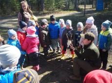 Grupa Sówki, Delfinki i Wiewiórki - Wiosenne prace w lesie