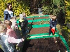 grupa Sówki - Sówki przygotowują przedszkolny ogródek