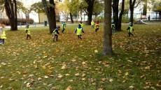 W poszukiwaniu jesieni